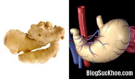 gung Dinh dưỡng ngăn ngừa bệnh tật