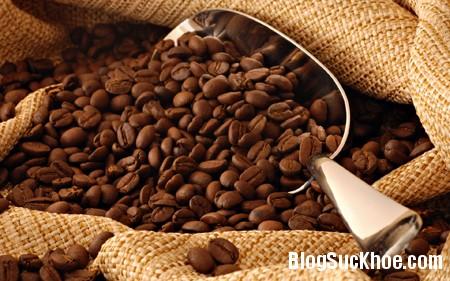 a1813 Uống cà phê có lợi hay hại ?