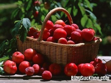 a8 Mỗi ngày một trái táo thì khỏi đến bác sĩ
