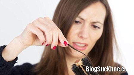 rung toc Công dụng trị rụng tóc của bồ kết