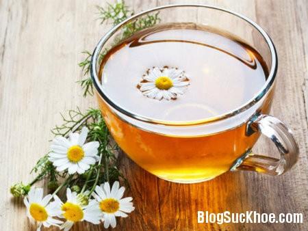hoa cuc 6 loại trà tốt cho sức khỏe