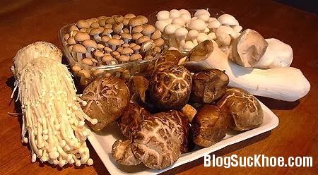 medicinal mushrooms Những loại thực phẩm giúp bạn chống lại ung thư