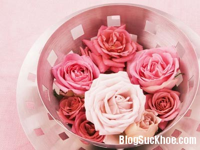 hoa hong Tác dụng trị mụn từ hoa