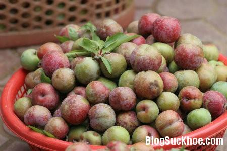 man Các loại quả không nên ăn nhiều vào mùa hè