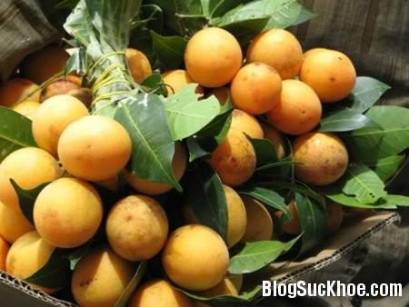 son tra 7 loại hoa quả giúp tiêu mỡ, giảm cân