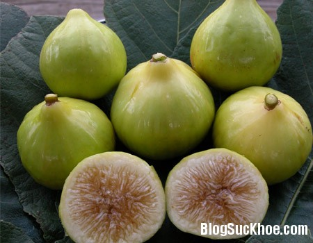 sung Các loại quả nên ăn trong mùa thu