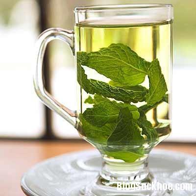 tra3 Công dụng tuyệt vời từ trà bạc hà