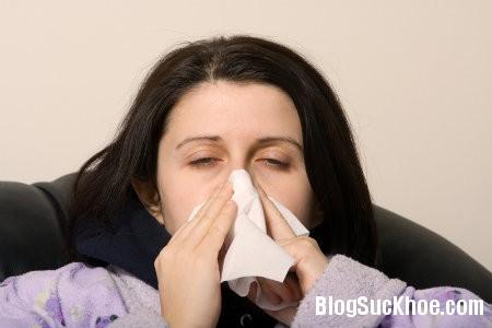 cum  Bài thuốc phòng và trị bệnh cúm