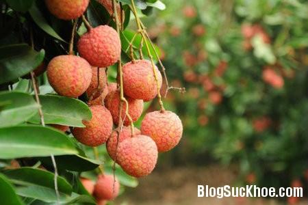 vai 8 loại quả mẹ bầu nên ăn trong thai kỳ