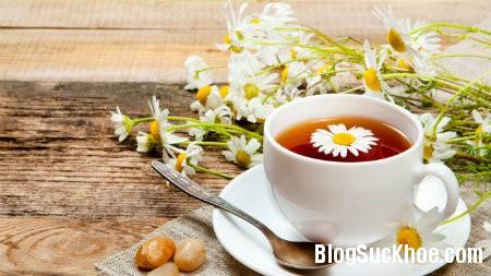 tra1 10 bài thuốc chữa đau đầu bằng hoa