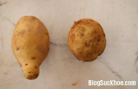 5 Phân biệt rau củ quả Trung Quốc và Đà Lạt