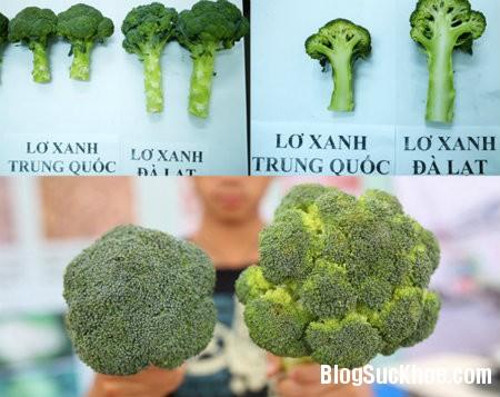 6 Phân biệt rau củ quả Trung Quốc và Đà Lạt