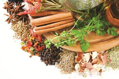 130 Một số thực phẩm giúp chữa viêm dạ dày