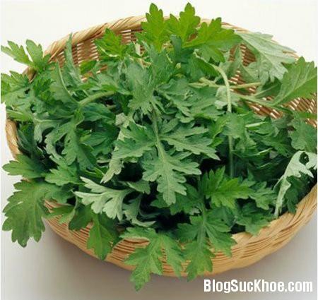 1248 5 loại cây cỏ dễ tìm chữa đau lưng