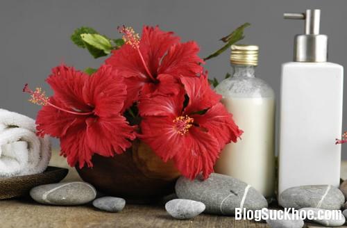 1325 7 cách sử dụng hoa dâm bụt làm đẹp cho tóc