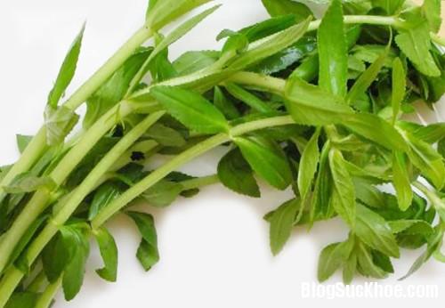 159 Trị sỏi thận với chuối hột và rau ngổ