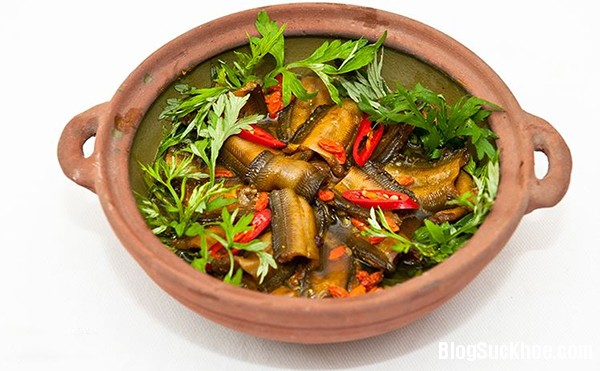 1343 Món ăn bài thuốc chữa bệnh từ lươn