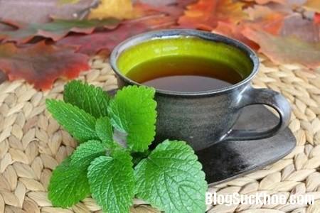 150 Những loại trà thảo mộc giúp giảm đau đầu nhanh chóng