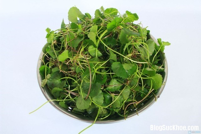 33 Top các loại rau làm đẹp da hiệu quả