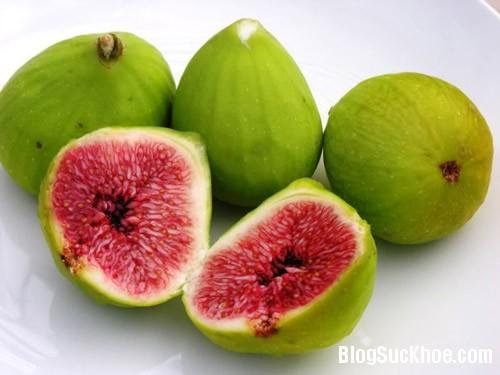 1391 Bài thuốc dân gian dùng trái sung chữa sỏi mật