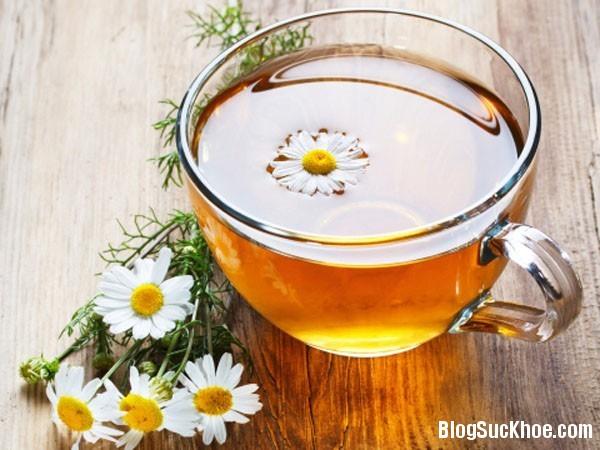 150 Tiêu độc, nhuận gan với trà hoa cúc