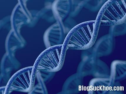 169 Yếu tố tiềm ẩn gây ung thư buồng trứng