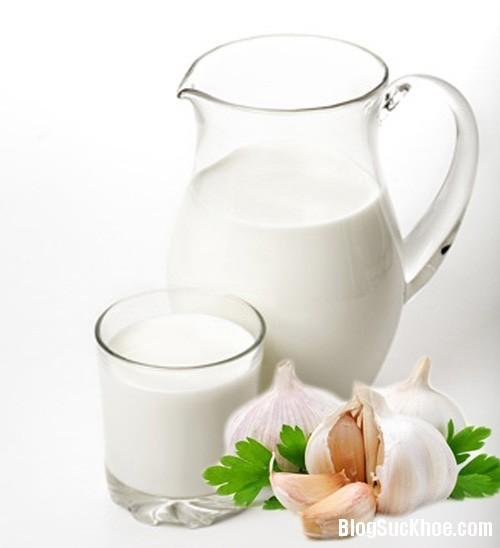 1153 Sữa tỏi chữa cúm và trị mụn