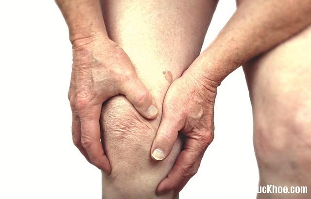 1301 Bài thuốc giúp giảm đua nhức khớp