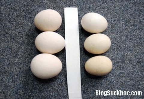 1159 Cách phân biệt trứng gà ta với gà công nghiệp tẩy trắng