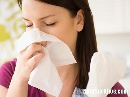 Hỗn hợp trị dứt viêm xoang, viêm mũi dị ứng