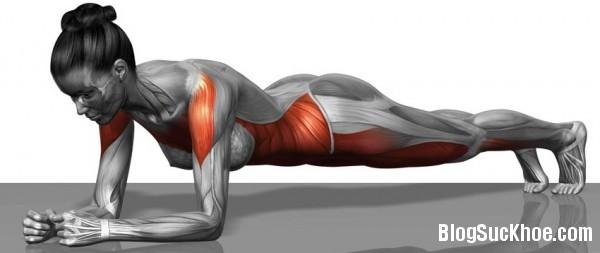 1131 5 phút plank mỗi ngày cho vóc dáng chuẩn