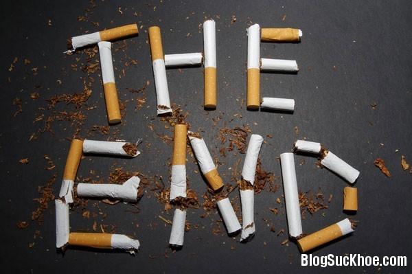 1277 Mẹo giúp bạn cai thuốc lá thành công