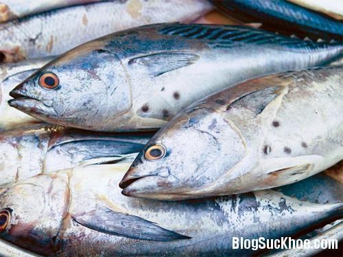 1274 Những loại cá mẹ bầu tránh tuyệt đối không được ăn