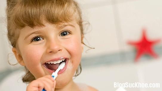 1276 Thói quen chết người thường gặp khi sử dụng bàn chải đánh răng