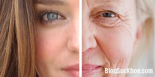 ngua lao hoa Cách ăn uống giúp bạn lão hóa chậm 15 năm