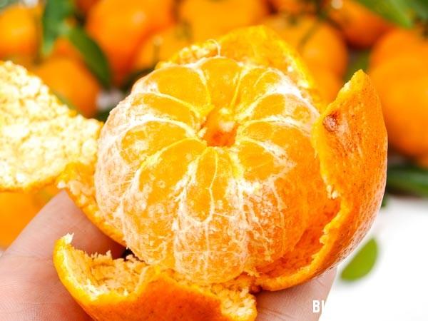 1447 Thực phẩm có công dụng trị cảm lạnh tốt nhất