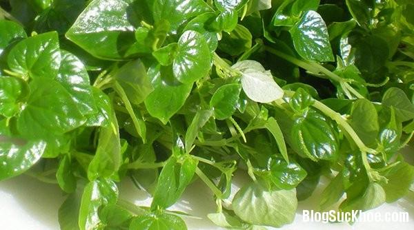 1451 Trị mụn hiệu quả với 10 loại rau củ dễ tìm