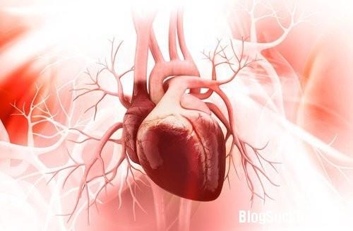 1173 Thói quen xấu gây hại tim bạn cần biết
