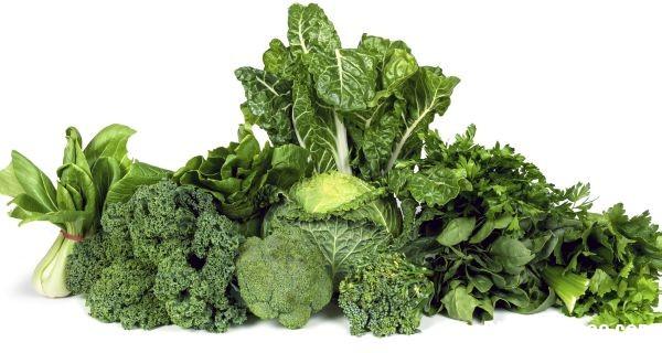 140 Top 10 loại thực phẩm cực tốt cho xương