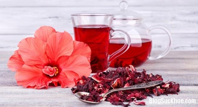 1101 Một số lợi ích của hoa dâm bụt đối với sắc đẹp