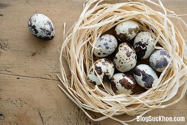 187 Trứng cút phòng tránh một số bệnh thông thường