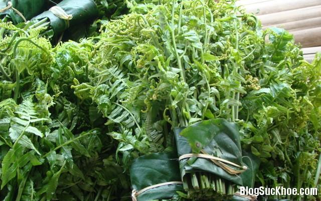 1 188 4 loại rau được cổ nhân Trung Hoa ca ngợi là rau trường thọ
