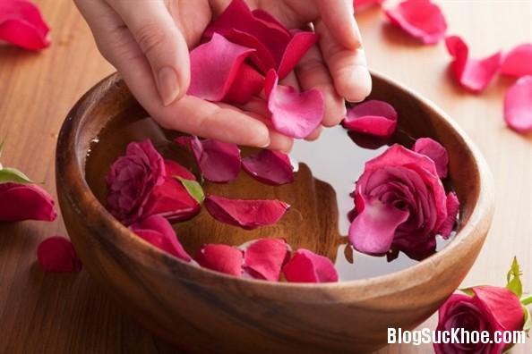 1 2 Mẹo giảm cân, chữa trĩ từ hoa hồng