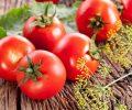 Công thức làm đẹp da từ cà chua phát huy hết mọi tác dụng cho chị em