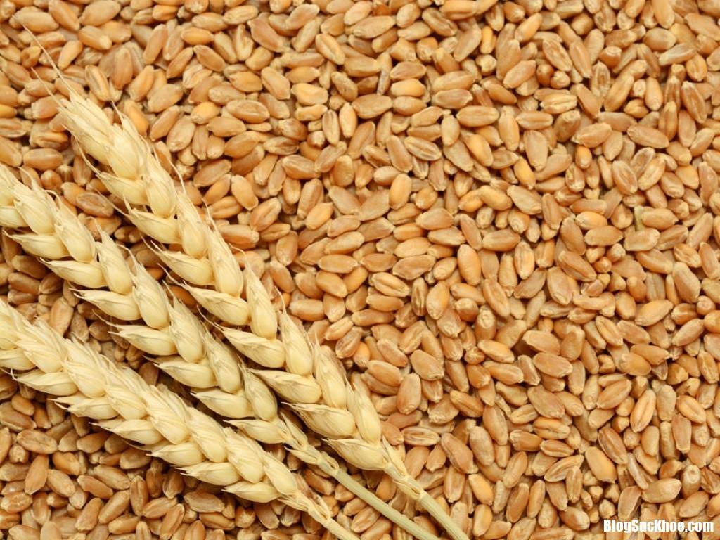 lua mi shutterstock vgmv Giảm nguy cơ bị ung thư kết trực tràng nhờ ăn lúa mì