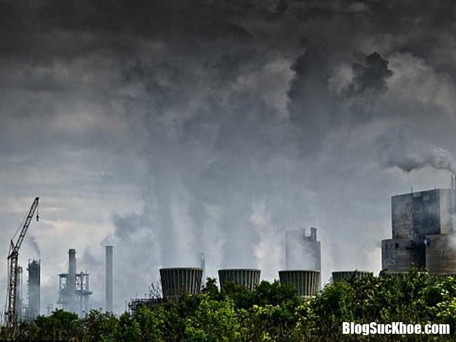 o nhiem shutterstock qrxc Ô nhiễm không khí sẽ từng ngày phá hủy quả thận