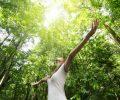 Phụ nữ sống gần cây xanh sẽ khỏe mạnh và thọ hơn