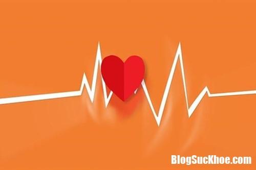 245571 TRBO Những nhóm máu dễ bị ung thư tuyến tụy và tim mạch