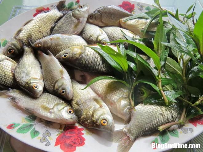 ca diec Điểm danh 4 món ăn từ cá cải thiện ham muốn cho các quý ông