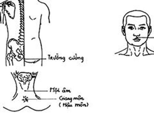 180755 thuong ma phong Đừng chết vì thiếu hiểu biết về căn bệnh thuuwongj mã phong!